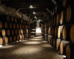Port wine barrels in vaulted cellar thumbnail